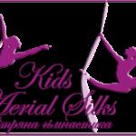 Kids Aerial + Pole Dance